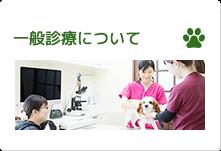 一般診療について