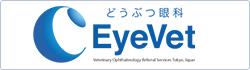 どうぶつ眼科 EyeVet